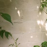 De kalei kan ook worden uitgesmeerd in alle richtingen en niet horizontaal. Dit geeft ook wel een mooi effect. Eerder voor tuinmuren dan voor gevels welsiwaar.
